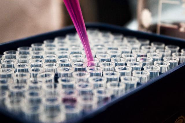 Peritos Microbiologia Madrid